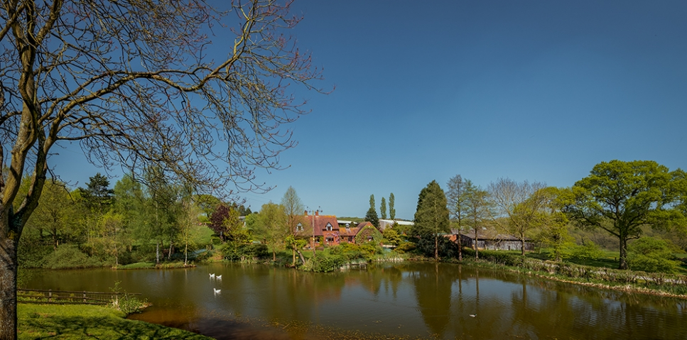 Bodenham Arboretum.