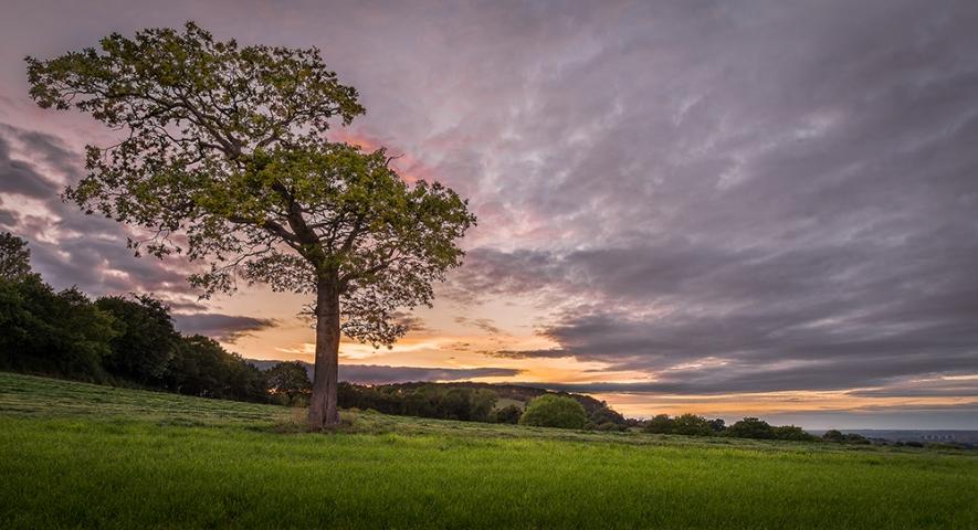 Clent Sunset.