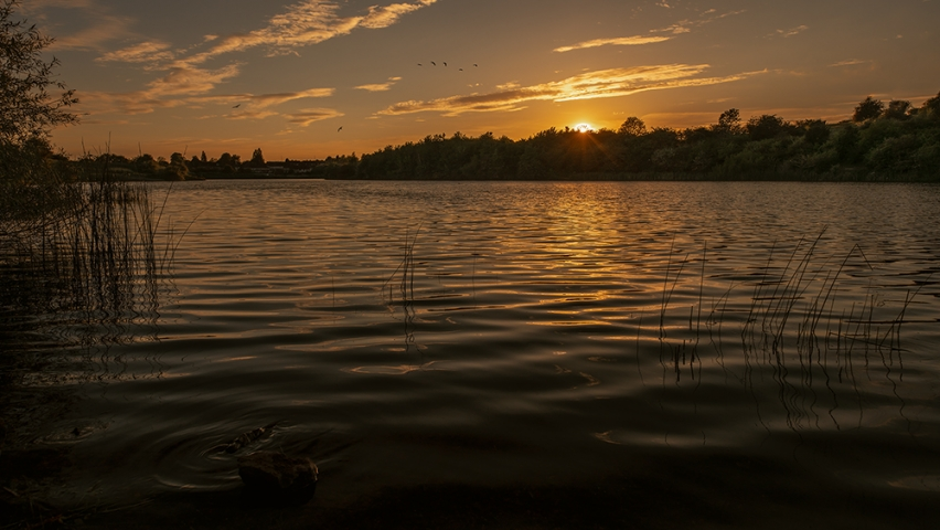 Sunset at the Fens Pool Nature Reserve.