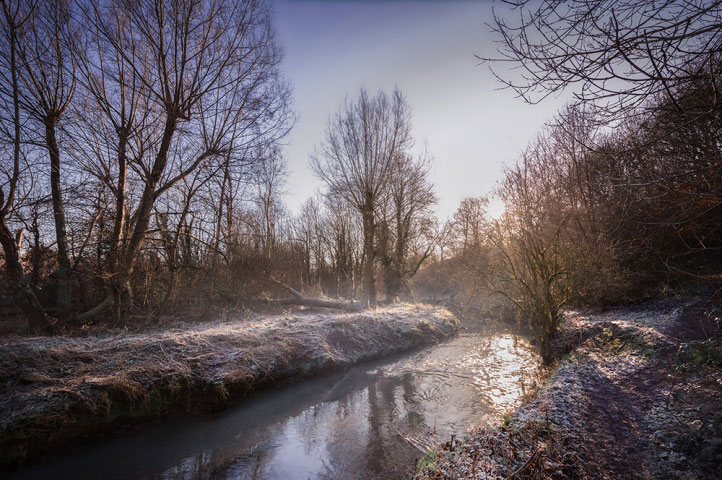 Winter stroll, The River Stour, Stourbridge.